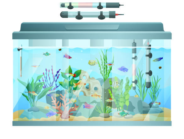 Matériels d'aquarium domestiques